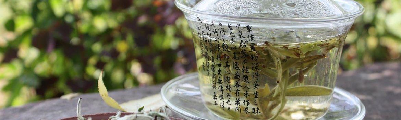 , Как правильно заваривать и пить белый чай