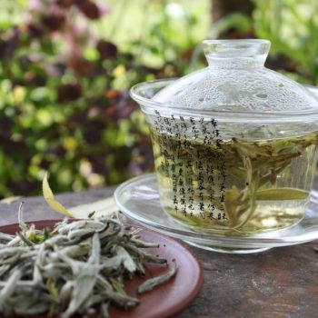 Как правильно заваривать и пить белый чай